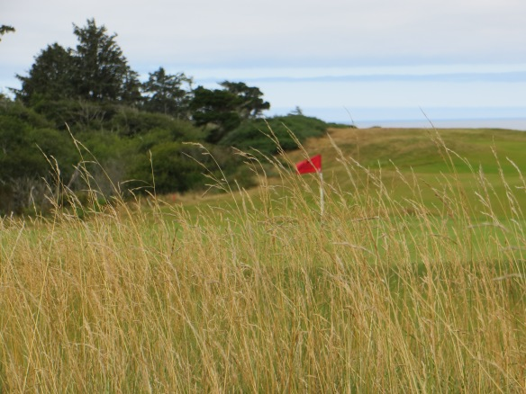The hay, gorse, and ocean at Bandon is not for everyone.