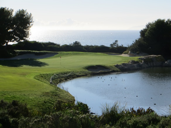 Fazio used the artists full palette of features on the par 3 7th.