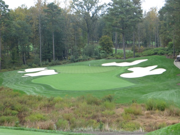 The Par 3 #7 fills the canvas with the setback of the trees as well as the elevation change.