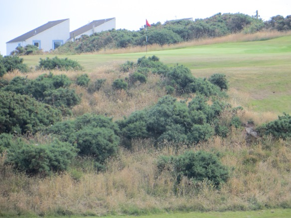 The shot up the gorse face on the 1th will test your nerve and patience