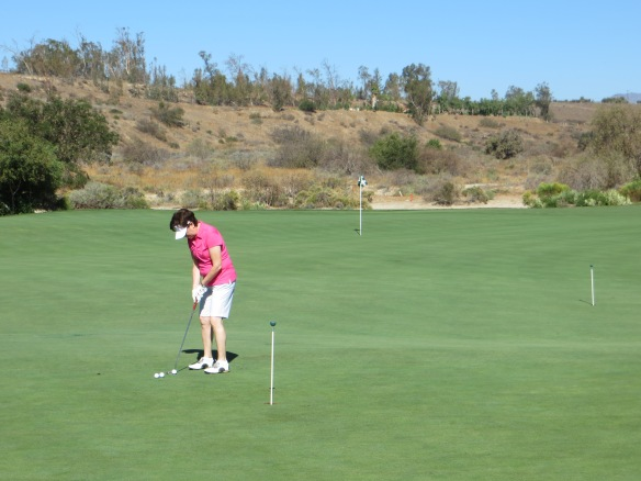 Practice Putting Shares With 18 Green