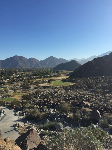 The postcard moment of the day the high tee view on 16