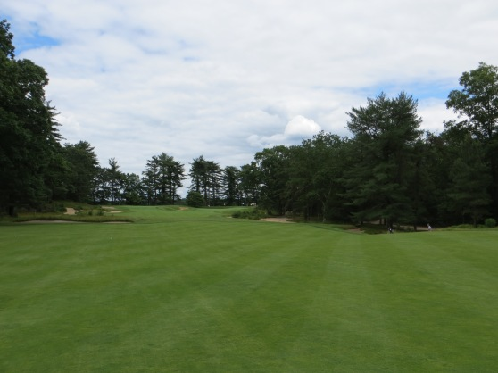 The green of the day will determine which side to place your drive