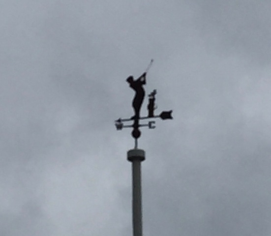 Weather Vane (1)